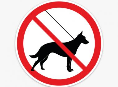 verboden-voor-honden-stickers-verbodsstickers-raam-deur